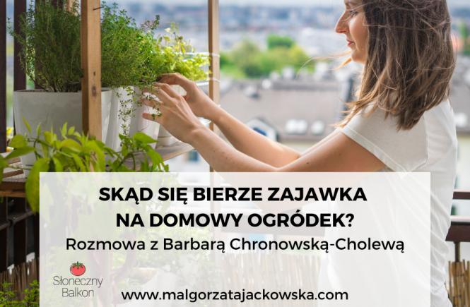 wywiad Małgorzata Jackowska i Barbara Chronowska Cholewa domowy ogródek