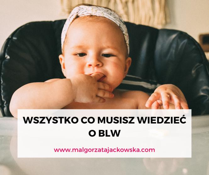 co musisz wiedzieć o BLW Jackowska blog